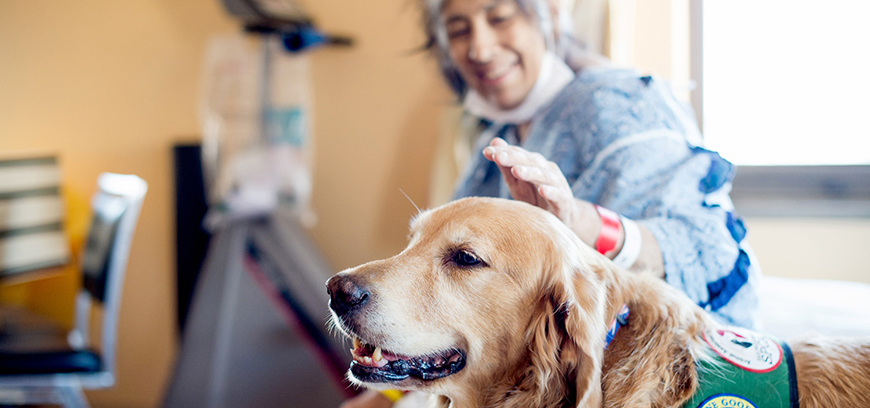 Support Canine Kindness for Dignity Health's patients, families and staff.